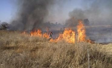 El 80% de los incendios son producto de la negligencia o intencionalidad del hombre