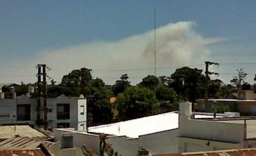 Nueve  dotaciones de bomberos trabajaron en el incendio de Crotto