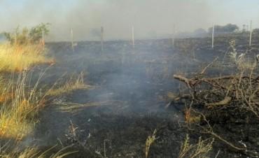 Dos incendios de pastizales en la tarde de este primer día del año