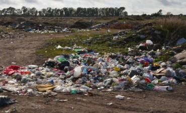 Fuertes multas por arrojar basura en la vía pública