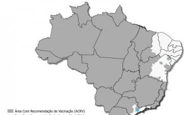 Recomendaciones de vacunación contra la fiebre amarilla en viajeros a Brasil