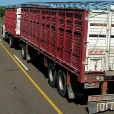 Los transportistas de hacienda con problemas