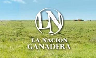 La Nación Ganadera y la Nacional Angus nuevamente en Olavarría