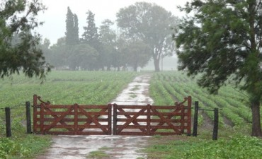 Registros de lluvia en la región