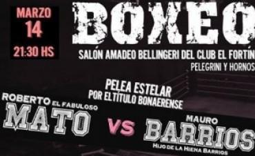 Boxeo: título bonaerense se pone en juego