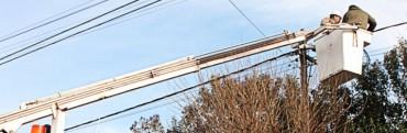 Advierten por posibles fallas electricidad por el #IndioEnOlavarría