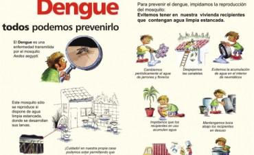En los últimos cuatro años, argentina redujo en un 90 por ciento los casos de dengue