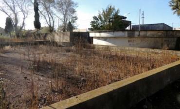 """UCR: """"El objetivo es poder recuperar el lugar y que sea útil para los vecinos"""""""