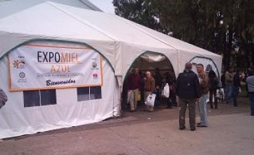Expo Miel Azul 2015