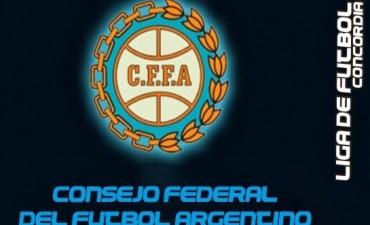 Según el Vice del Consejo Federal  el Federal
