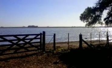 Laguna La 100
