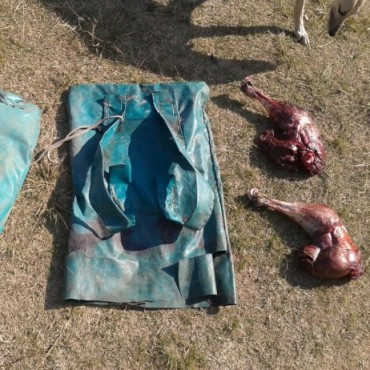 Caza Furtiva: Veinte personas demoradas