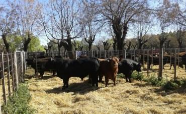 En Regional Agropecuario hablaron Anselmo Juares y Antonio de Los Heros