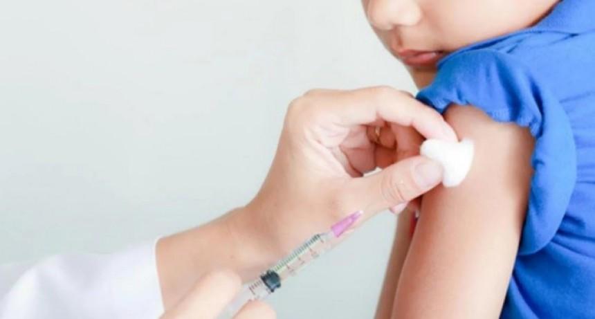 Campaña antigripal 2018: se recibió una nueva tanda de vacunas