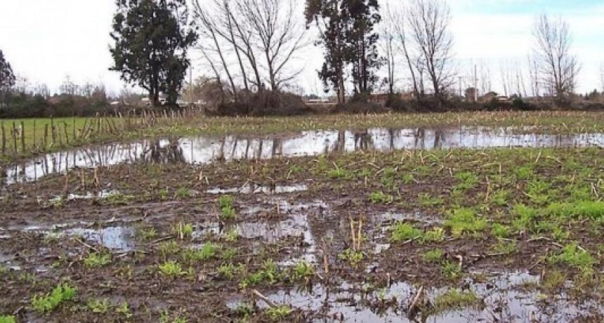 Importantes registros de lluvia en la región