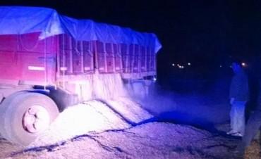 Detectaron camión con más de 20 mil kilos de sobrecarga