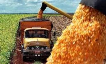 Medida de fuerza de transportistas de cereales