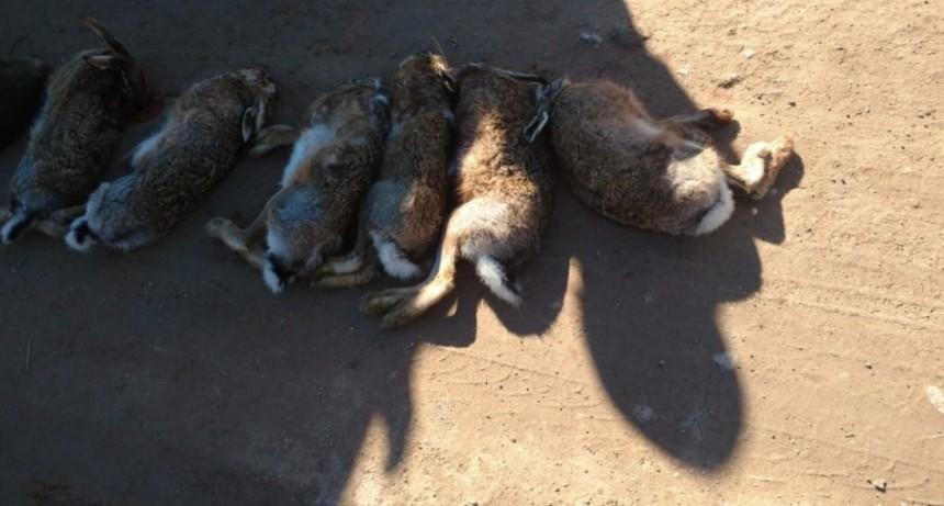 Labran infracción a cazadores furtivos
