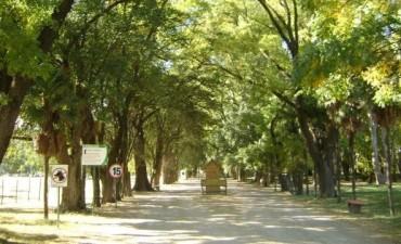 """Día del Árbol en el Bioparque Municipal """"La Máxima"""""""