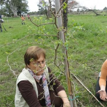 """Día del Árbol en el Bioparque """"La Máxima"""""""