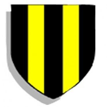 El Club San Martin cumple 96 años.