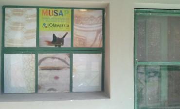 Se podrá visitar el depósito del Museo Antropológico y Paleontológico de Olavarría