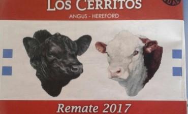 Gustavo Pouyane presentó el Remate 2017 martes 19 de setiembre