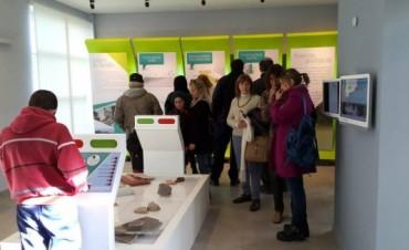 La historia geológica de Olavarría en el Museo de las Ciencias