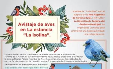 Avistaje de aves en La Isolina
