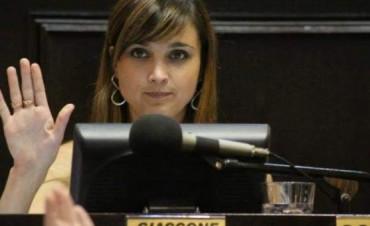 Diputados aprobó la ley que crea un Sistema Provincial de Bibliotecas