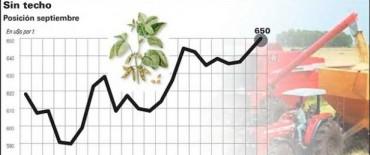 La soja se negoció a $2.030 la tonelada y los productores comienzan a vender