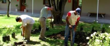 Se plantarán más de 250 especies en el patio del Centro Cultural San José