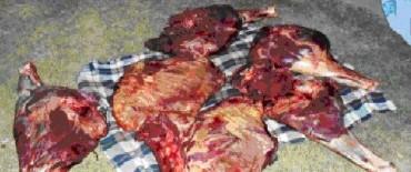 Importante secuestro de carne y un aprehendido