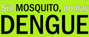 En Olavarría no se detectaron larvas del mosquito transmisor del Dengue