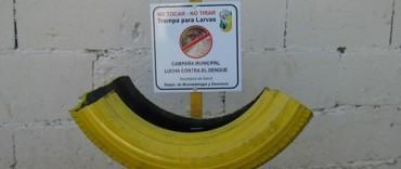 Dengue: Controlan a los mosquitos en más de 180 ubicaciones del partido