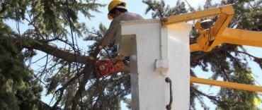 Azul: tareas de mantenimiento en el Parque Municipal