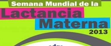 Semana Mundial de la Lactancia Materna 2013: Capacitación para profesionales