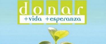 Elecciones 2013 : Se podrá manifestar la voluntad de ser donante de órganos